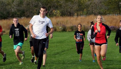 Cross Country Strives for Nationals