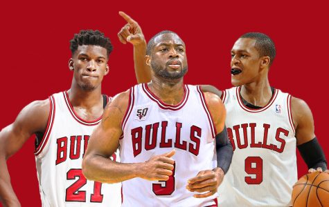 THE HUNGRY BULLS – Will they capture their prey?