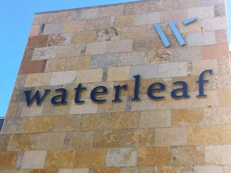 A tour of the Waterleaf