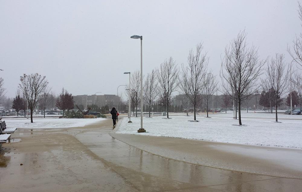 Slush blankets the sidewalks at College of DuPage's main campus on Nov. 24, 2014.