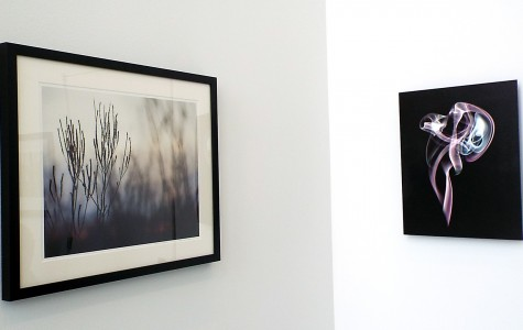 "The pieces ""Silhouette Glow"" by Dee hudson (left) and ""Apparition"" by Lorae Mundt (right) at the Wings Student Art Gallery in the College of DuPage on Jan. 28. These and many other pieces will be here until Feb. 27, 2015."
