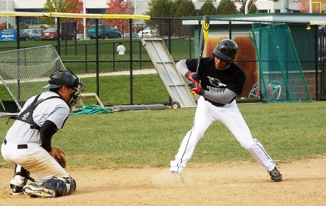 Baseball pitches past competition at S.C.