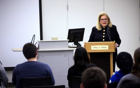 Patricia Bellock leads panel discussion on human trafficking in Illinois