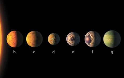 NASA Discovers Seven Possibly Life-Supporting Planets