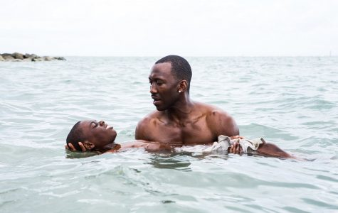"""Moonlight"": Finding Oneself Through Pain and Journey"