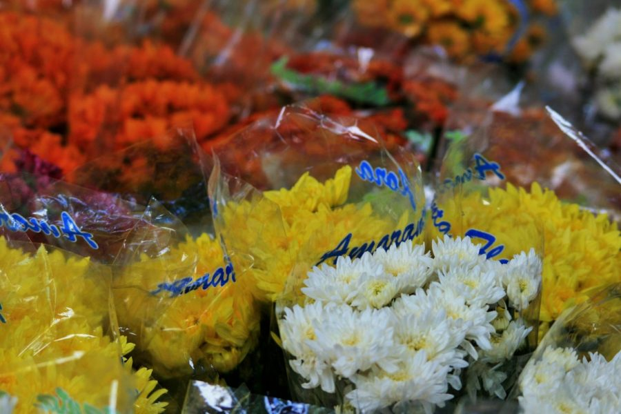 Contactless flower delivery ensuring Mother's Day smiles despite outbreak