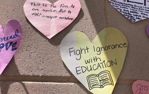 Gallery: Messages of unity, change in Naperville
