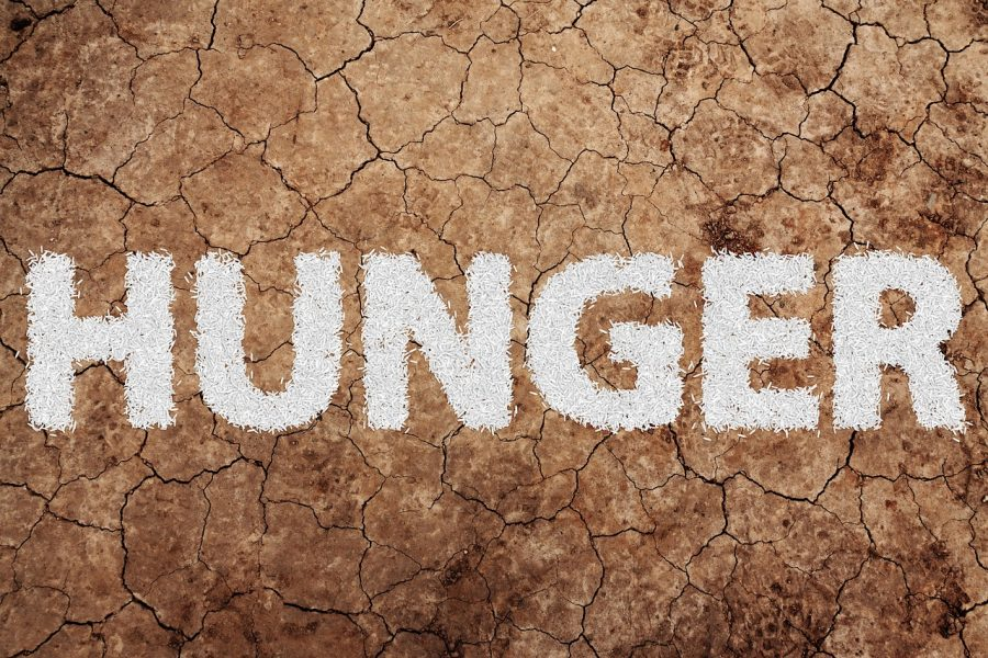 OPINION: The low-cost steps the government could take to ease hunger on college campuses