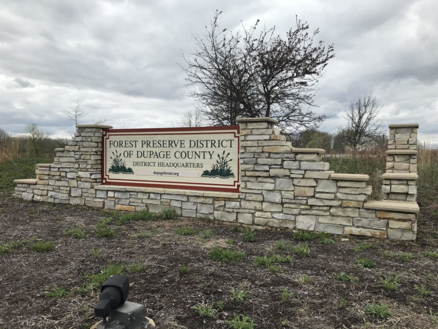 Parks, Preserves, and a Pandemic- A Year of Drastic Change for Local Forest Preserves