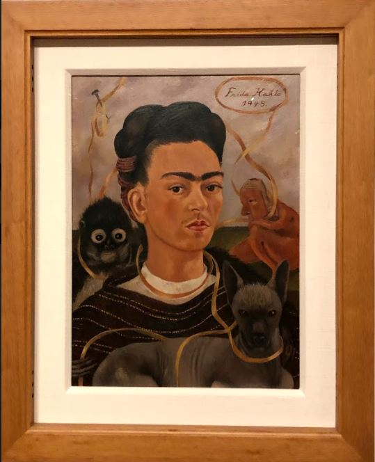 After a year of waiting, the Frida Kahlo: Timeless exhibition is on display
