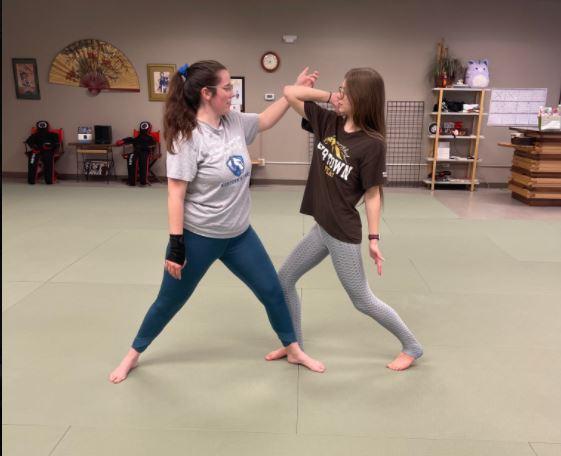 Local Martial Arts Studio Owner Offers Ladies Self-Defense