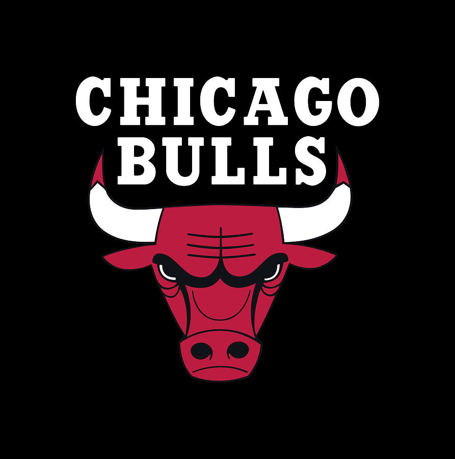 Bulls Offseason Moves Have Fans Excited for the Future
